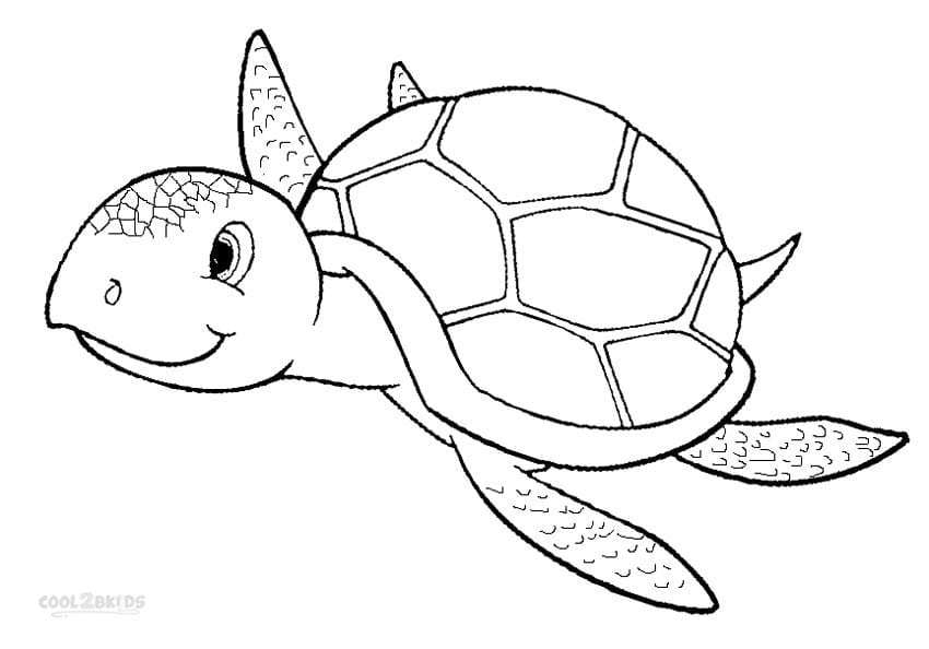 Sea Turtles Coloring Pages 6  256
