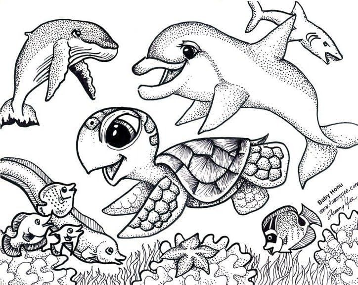 Sea Turtles Coloring Pages 8  258