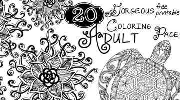 Adult Coloring Printable