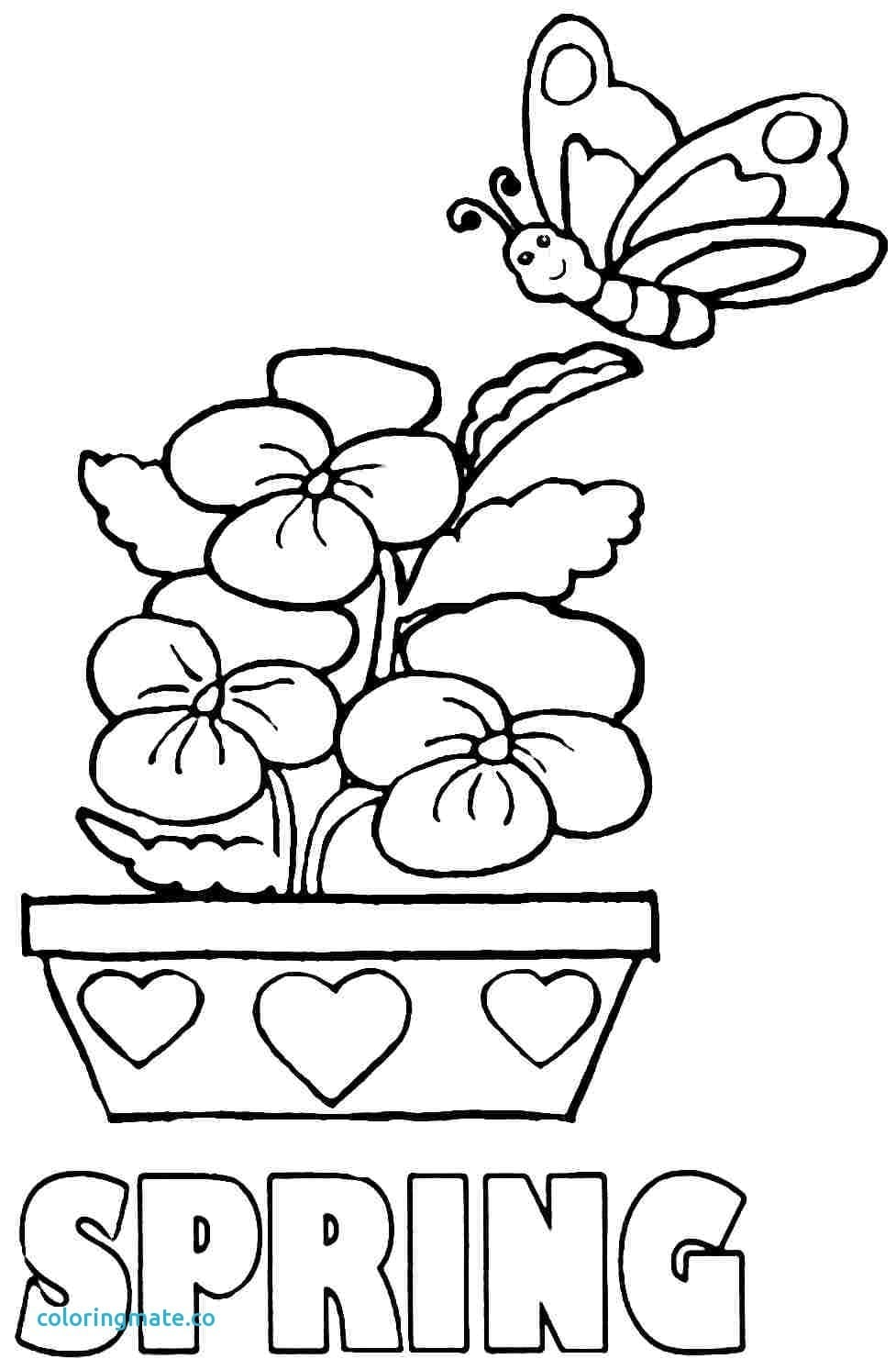 Spring Coloring Pages Fresh Free Season Az For