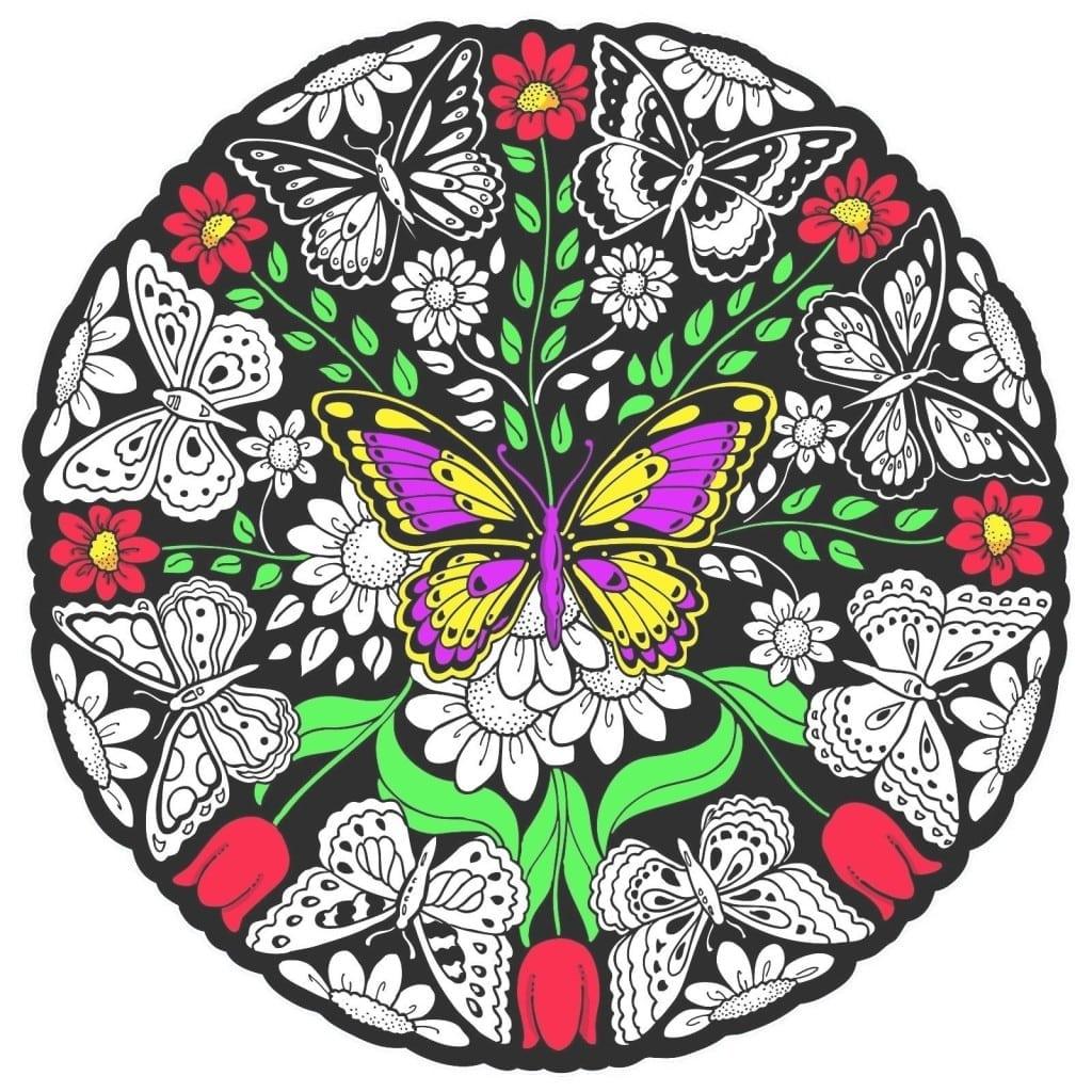 The Perfect Butterfly Mandala