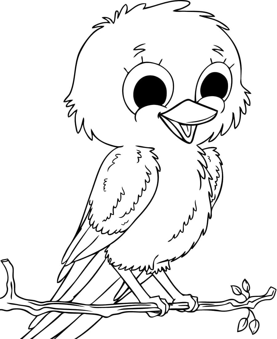 Trendy Fbecabddbebbda By Bird Coloring Pages On With Hd Resolution