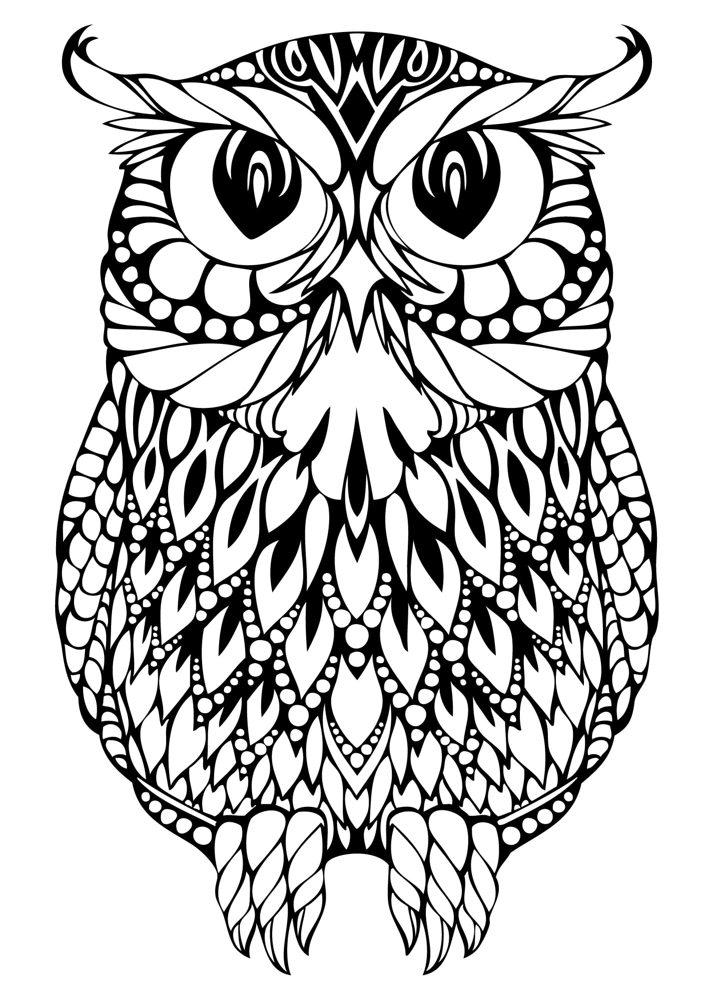 Simple Coloring Pages Owls Free  20904