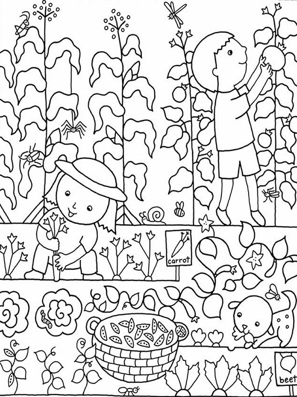 Medquit » Innovative Flower Garden Coloring Pages Org  12692