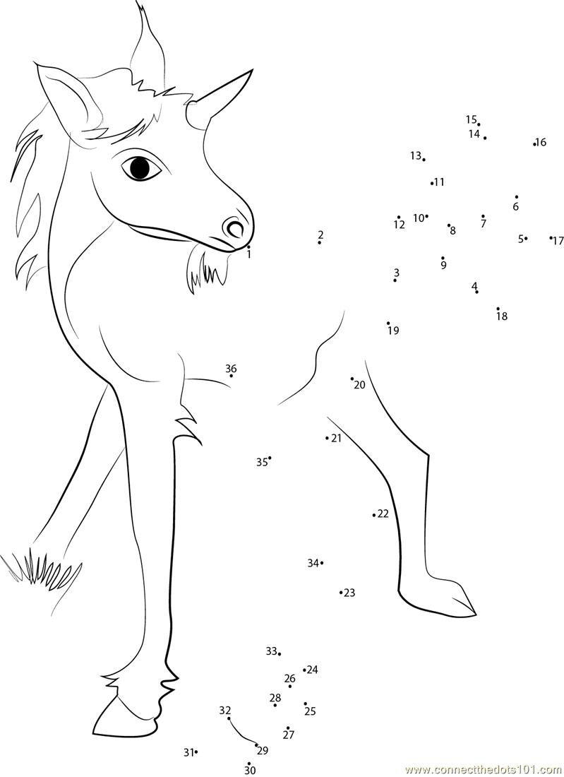 Unicorn Baby Dot To Dot Printable Worksheet