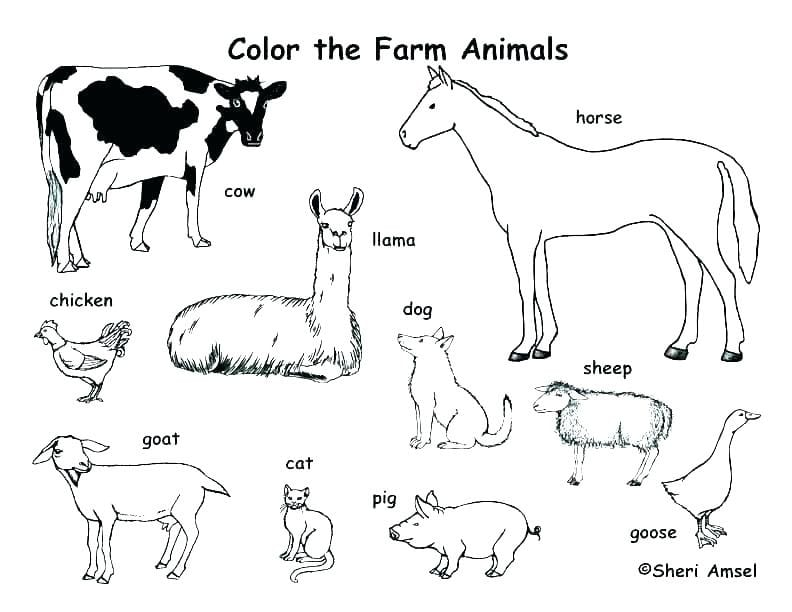 Heavenly Coloring Pages Of Farm Animals Coloring In Tiny Free