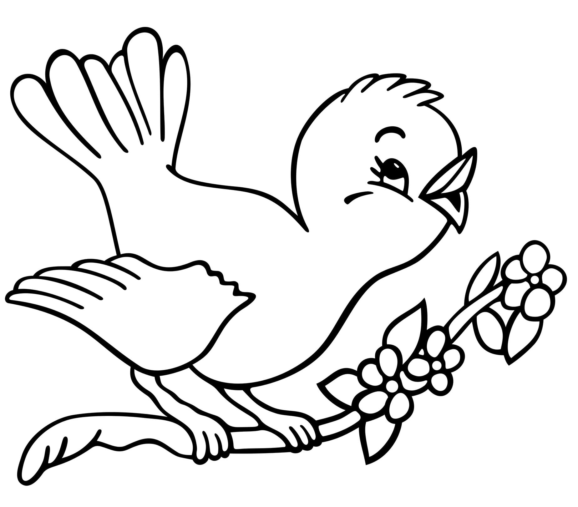 Bird Coloring Pages Related Keywords Suggestions Bird Bird