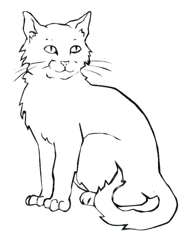 Coloring Page Cat  1632