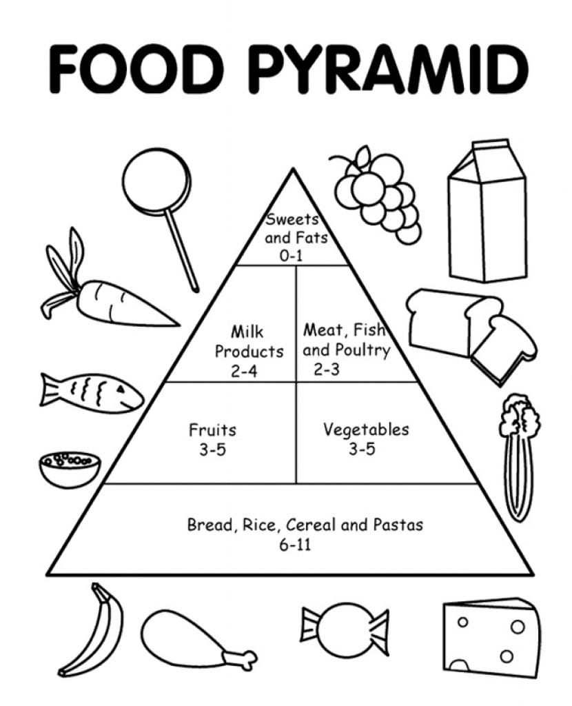 graphic relating to Food Pyramid Printable identify Food items Pyramid Printable Coloring Internet pages