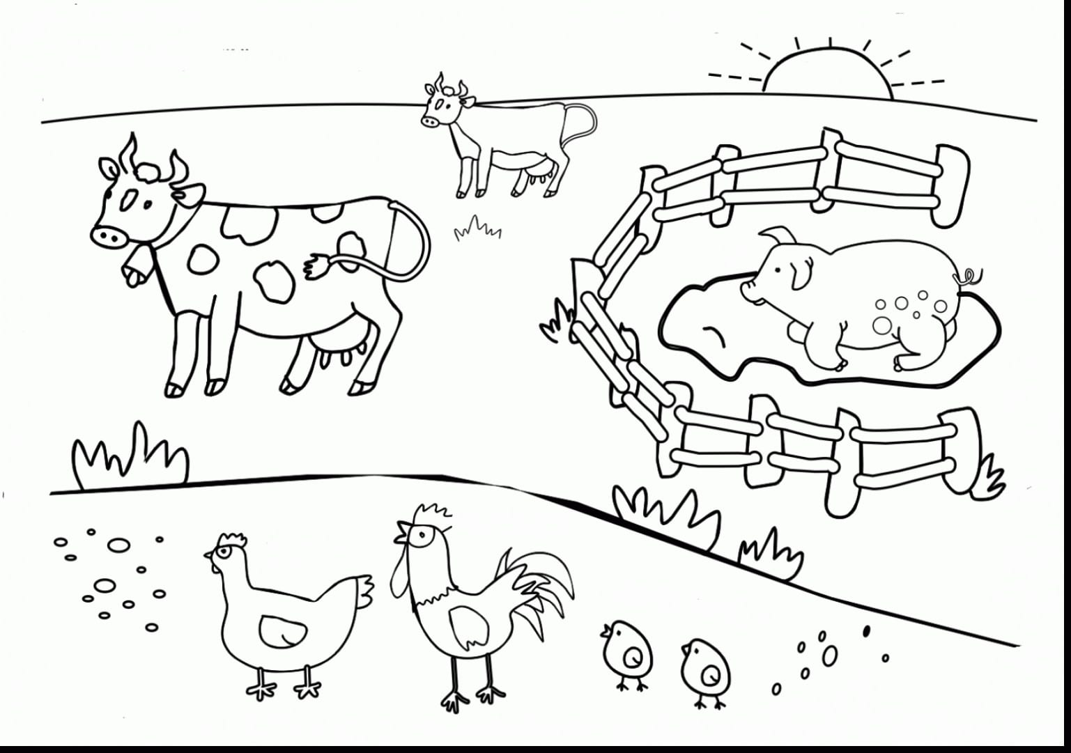 Pictures Of Farm Animals To Color