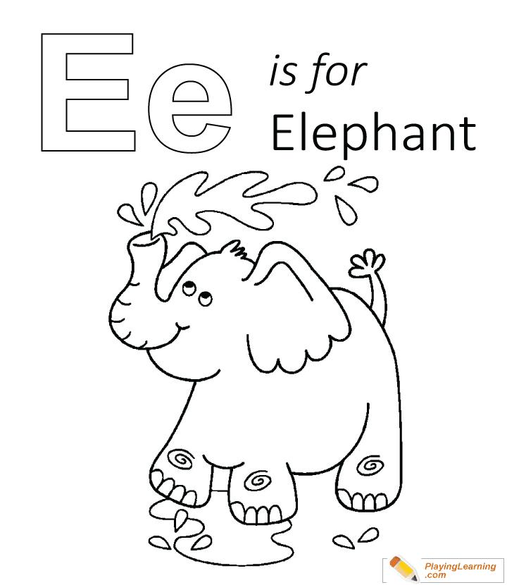 Elephant Penise