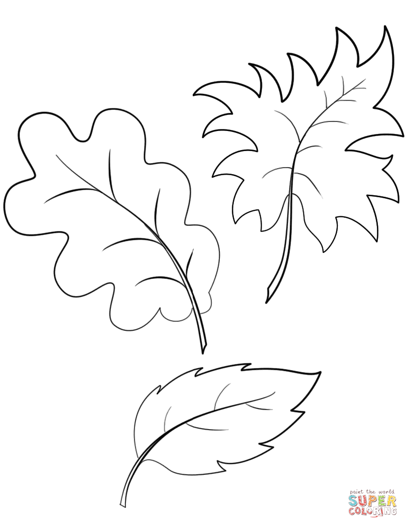 Fall Autumn Leaves Coloring Page