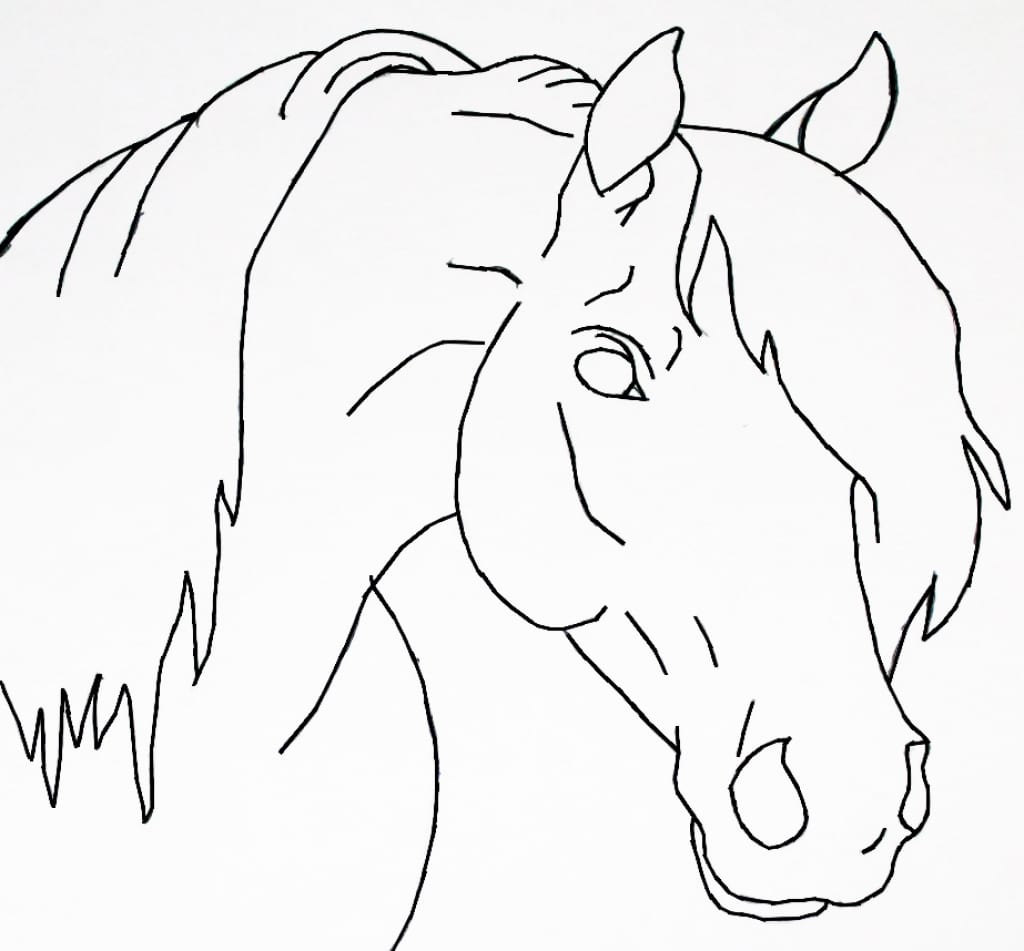 Horses Step By Step Easy Drawing At Getdrawings Com