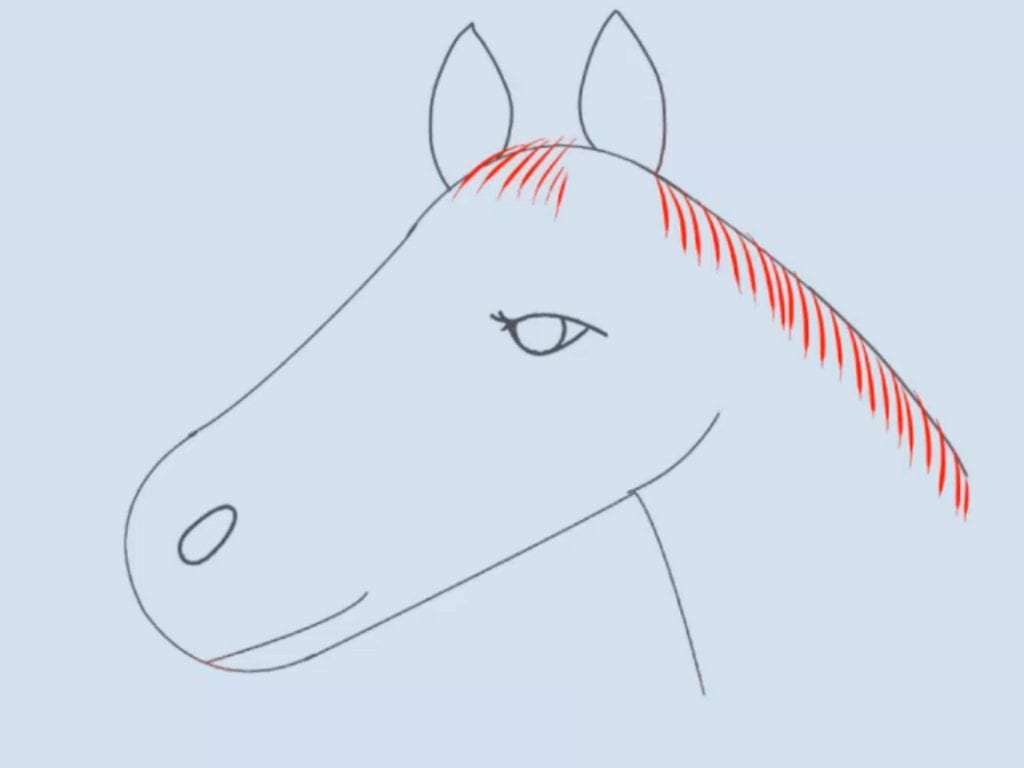 How To Draw A Horse For Kids Fresh How To Draw A Horse Head 15