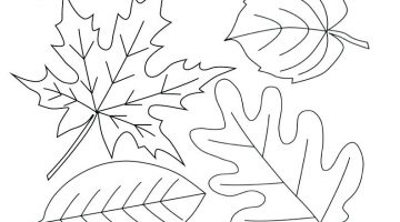 Fall Leaves Coloring Pages For Preschoolers