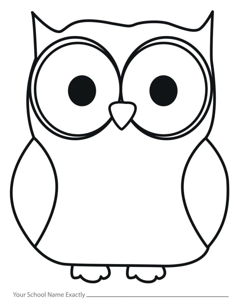Outline Drawing Of Owl 16 Cartoon