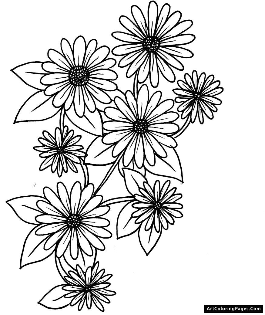 Popular Daisy Coloring Pages Flower 1 J Sheets Page 2 For