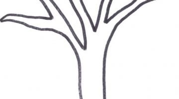 Blank Tree Outline