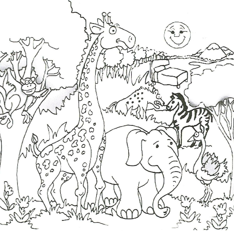 Safari Coloring Page 14  20829