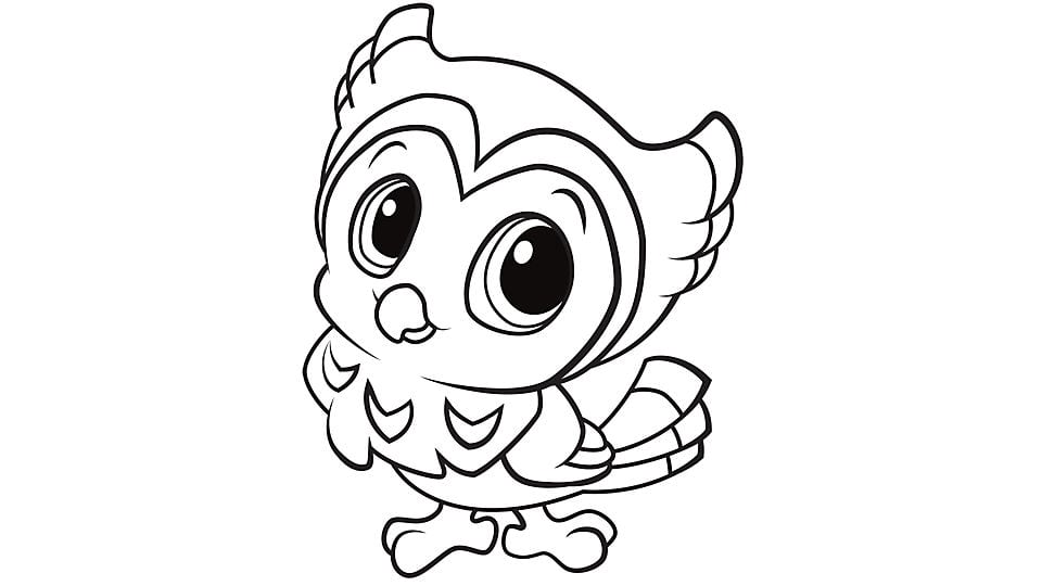 Fbbbaaecfaff Inspirational Owl Coloring Pages To Print