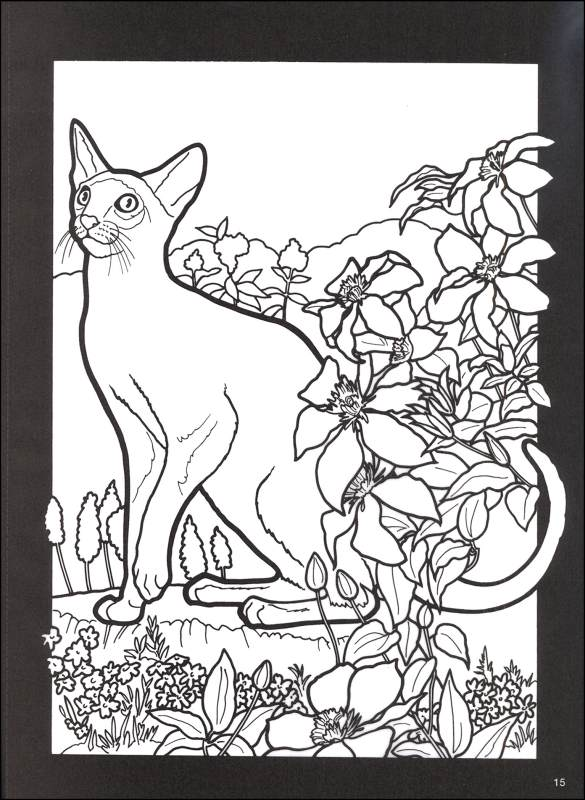 Stained Glass Coloring Book Cat Pages Cats