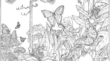 Free Printable Nature Coloring Pages