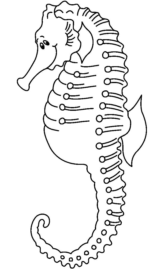 65+ Sea Creature Templates