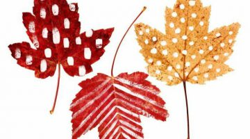 Printable Pictures Of Leaves