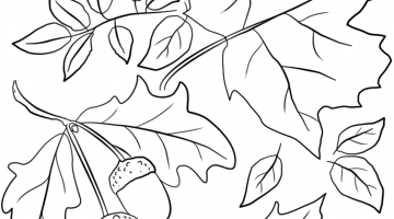 Autumn Leaf Template Free Printables
