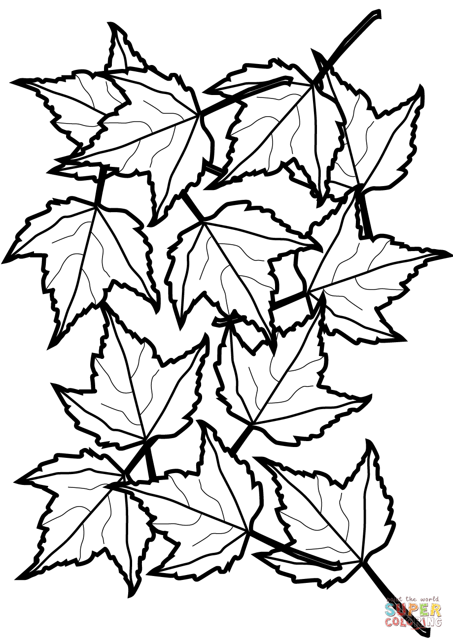 Autumn Maple Leaves Coloring Page