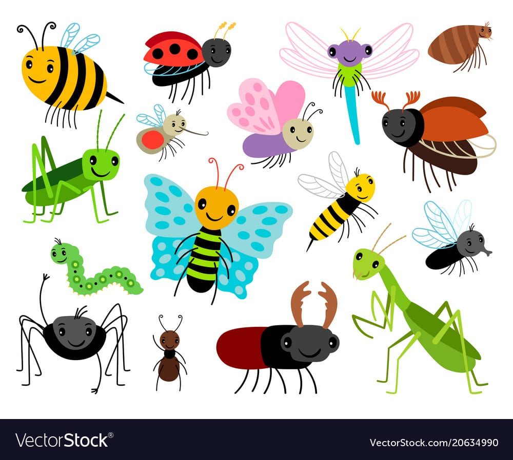 Cartoon Insects Cute Insect Collection Royalty Free Vector