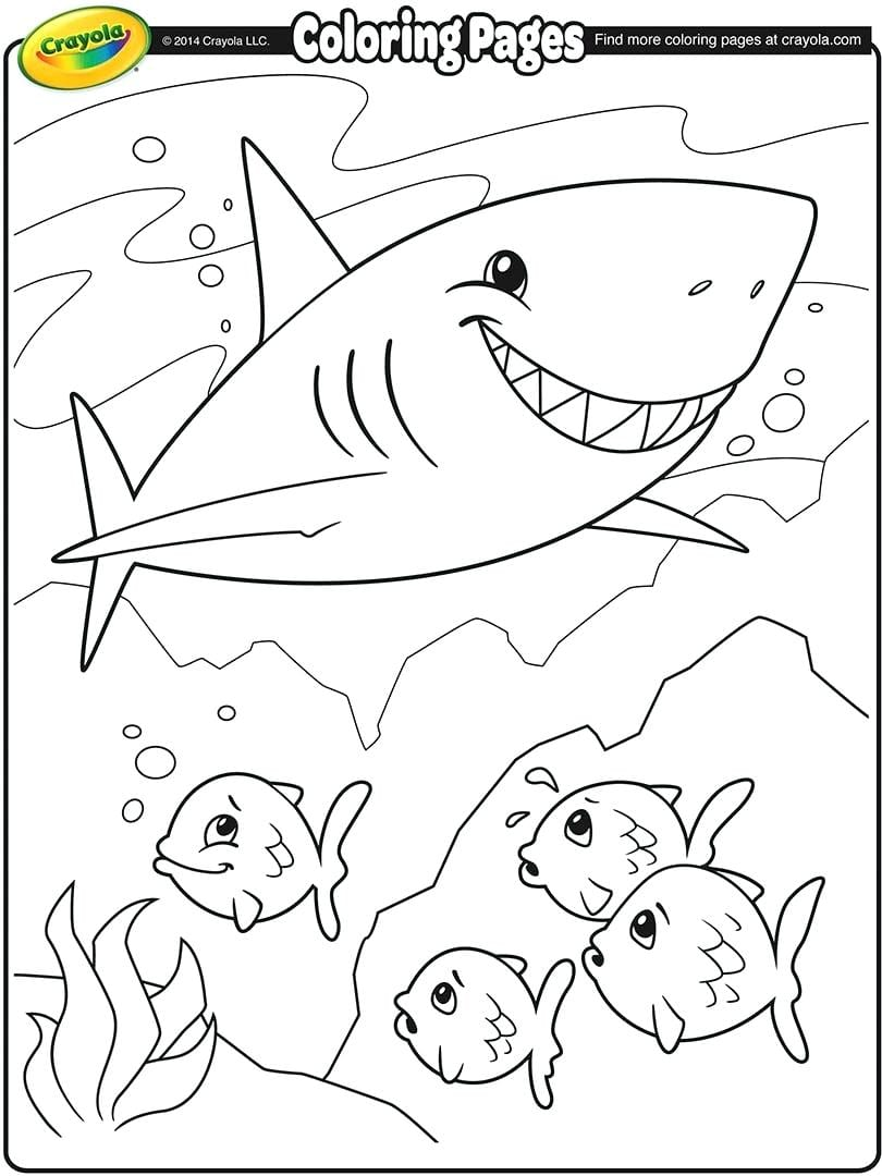 Coloring Pages Of Sharks Coloring Pages Of Whale Sharks – Ideiwow Info