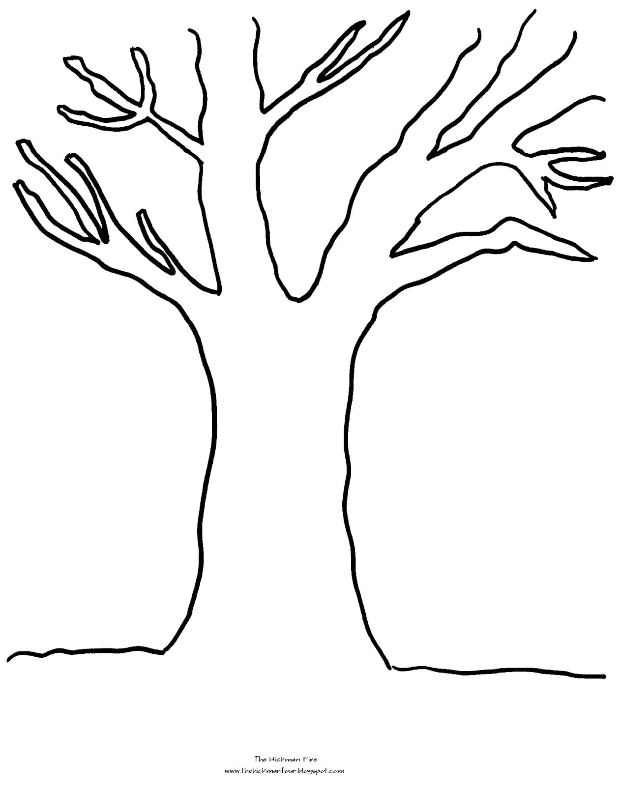 Trees Leaves Coloring Pages Free Throughout