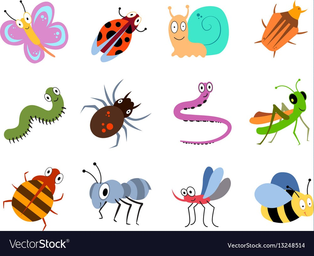 Cute And Funny Bugs Insects Collection Royalty Free Vector