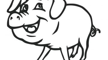 Realistic Pig Coloring Pages