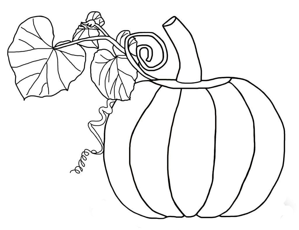 Pumpkin Coloring Pages Dltk