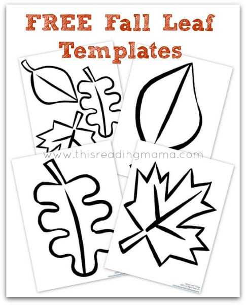 Free Leaf Templates Printable Archives