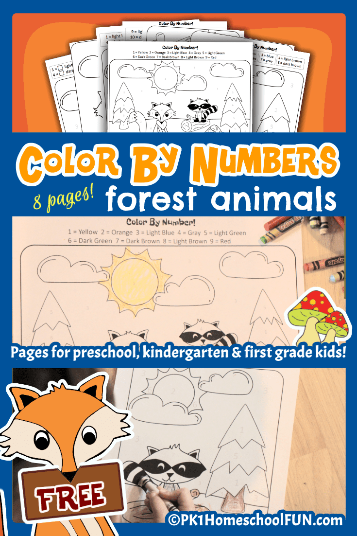 Free Color By Numbers Forest Animals Printable