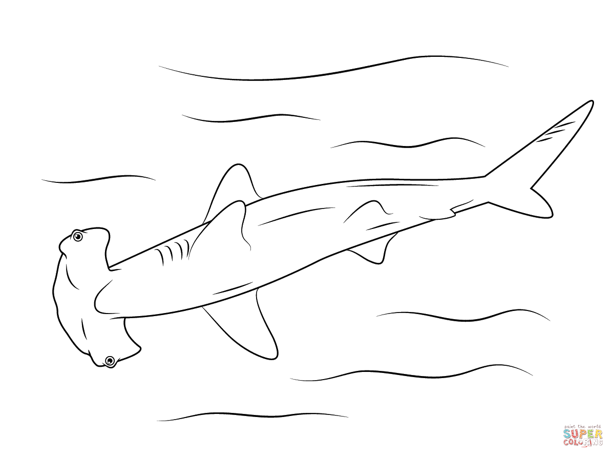 Sharks Coloring Pages