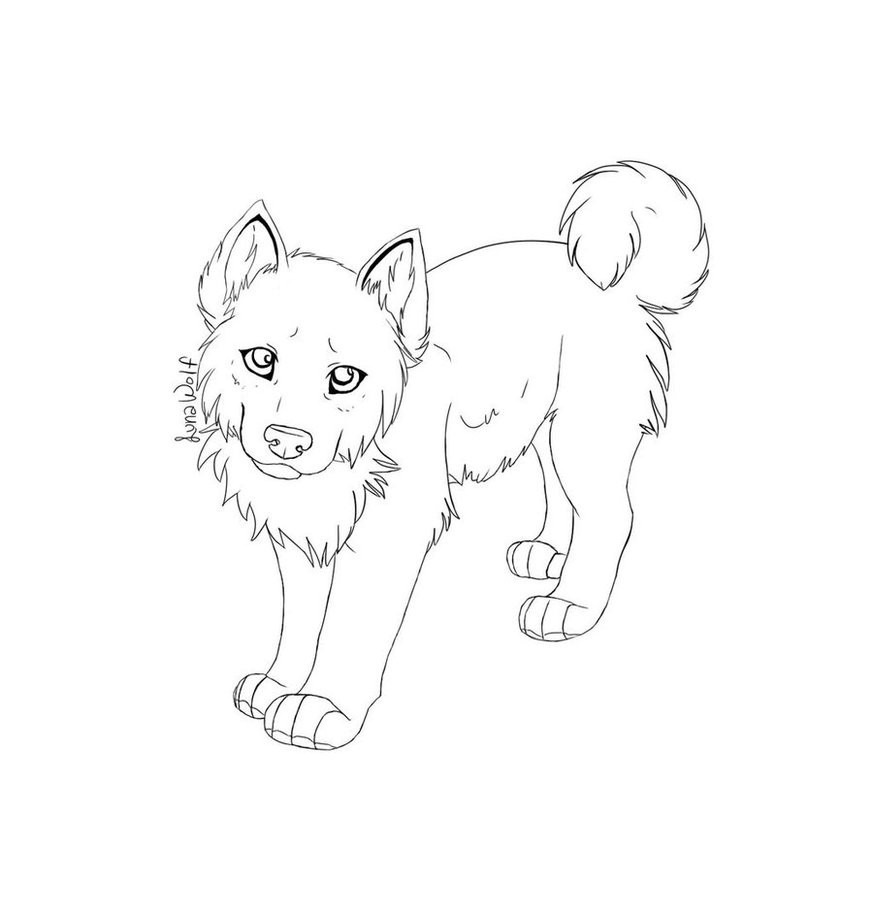Fresh Husky Coloring Pages Design