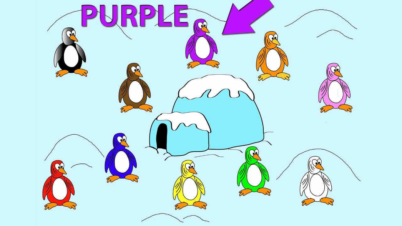 Penguin Colors