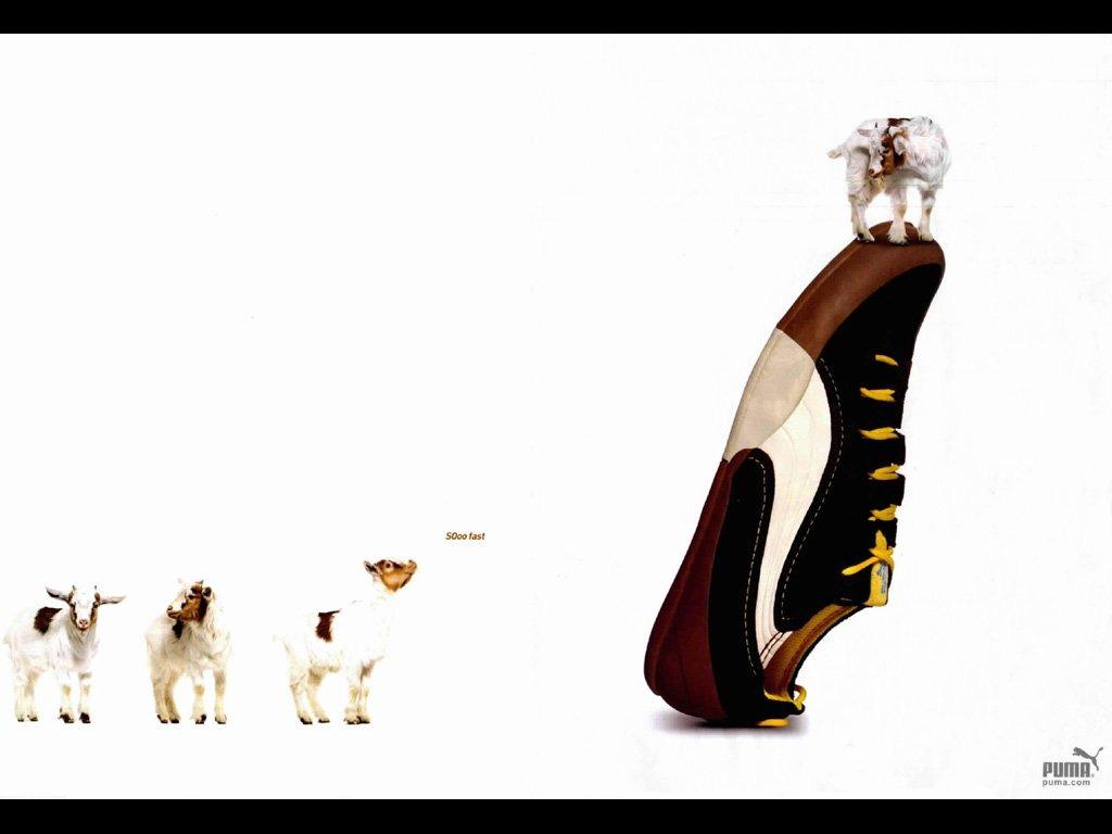 Puma Shoes    Goat   Print Ad
