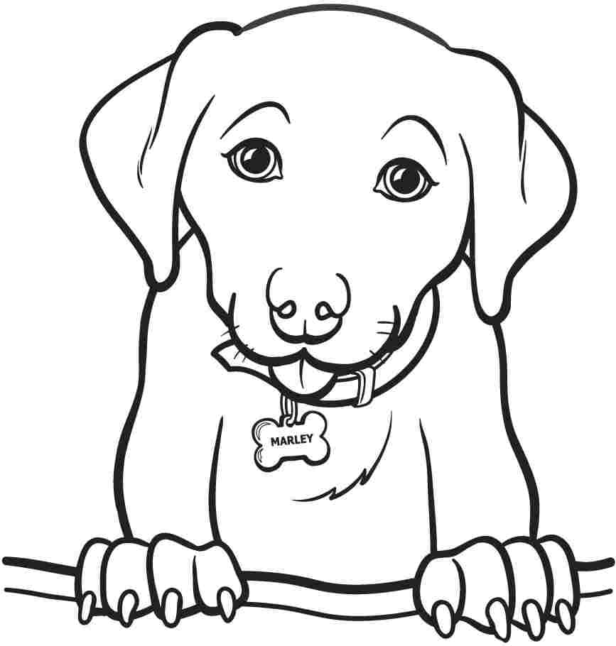Special Free Coloring Pages Of Dogs Innovative Printable Dog For
