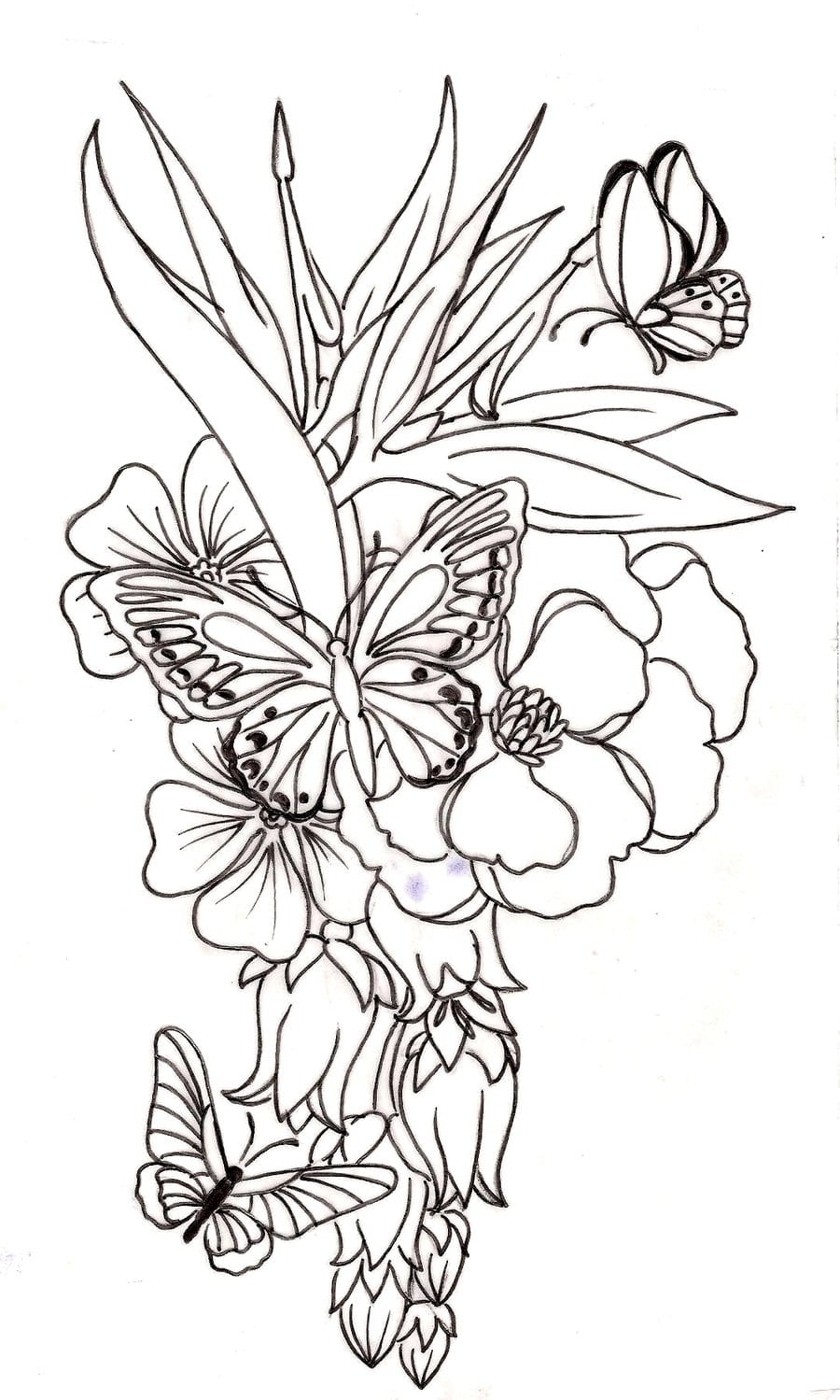 Without Color Flower N Butterflies Tattoo Design » Tattoo Ideas