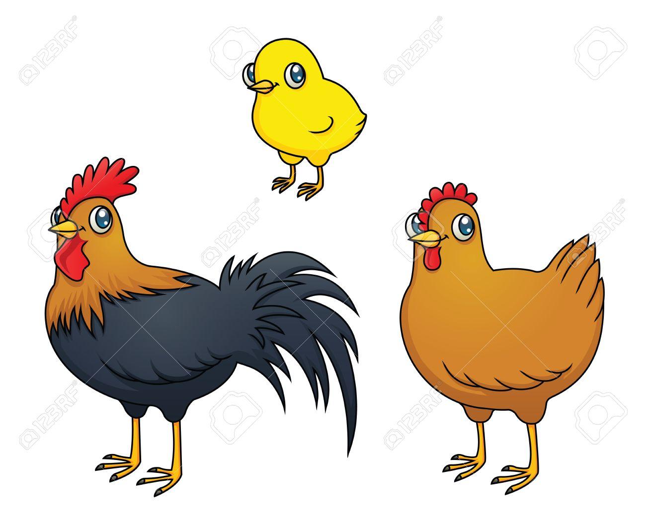Chicken Hen Rooster