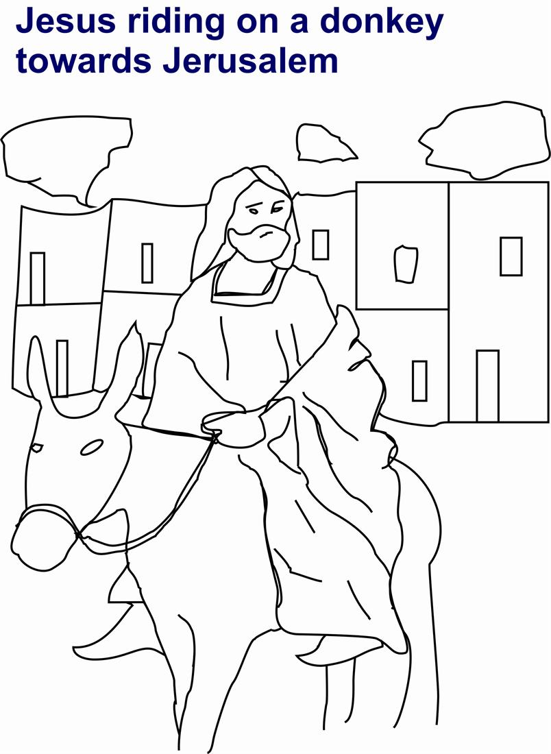 Jesus On Donkey Coloring Page  2403414