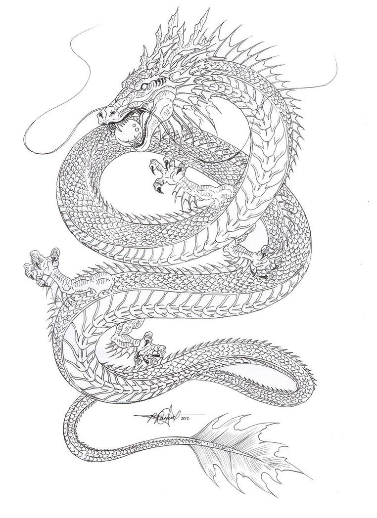 Outline Sketch Of The Chinese Water Dragon  Gonna Color It