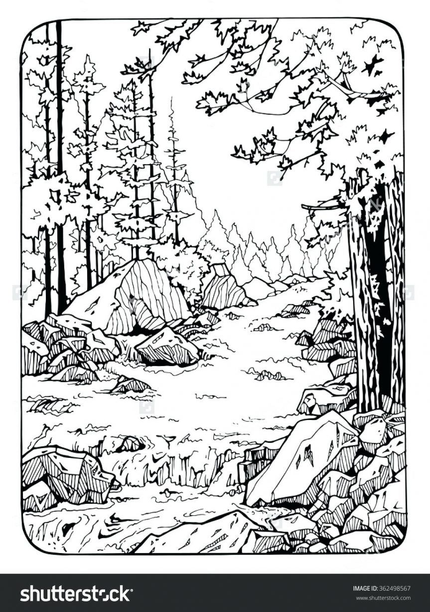 coloring pages river scene coloring page nature pages tree with neo coloring. Black Bedroom Furniture Sets. Home Design Ideas