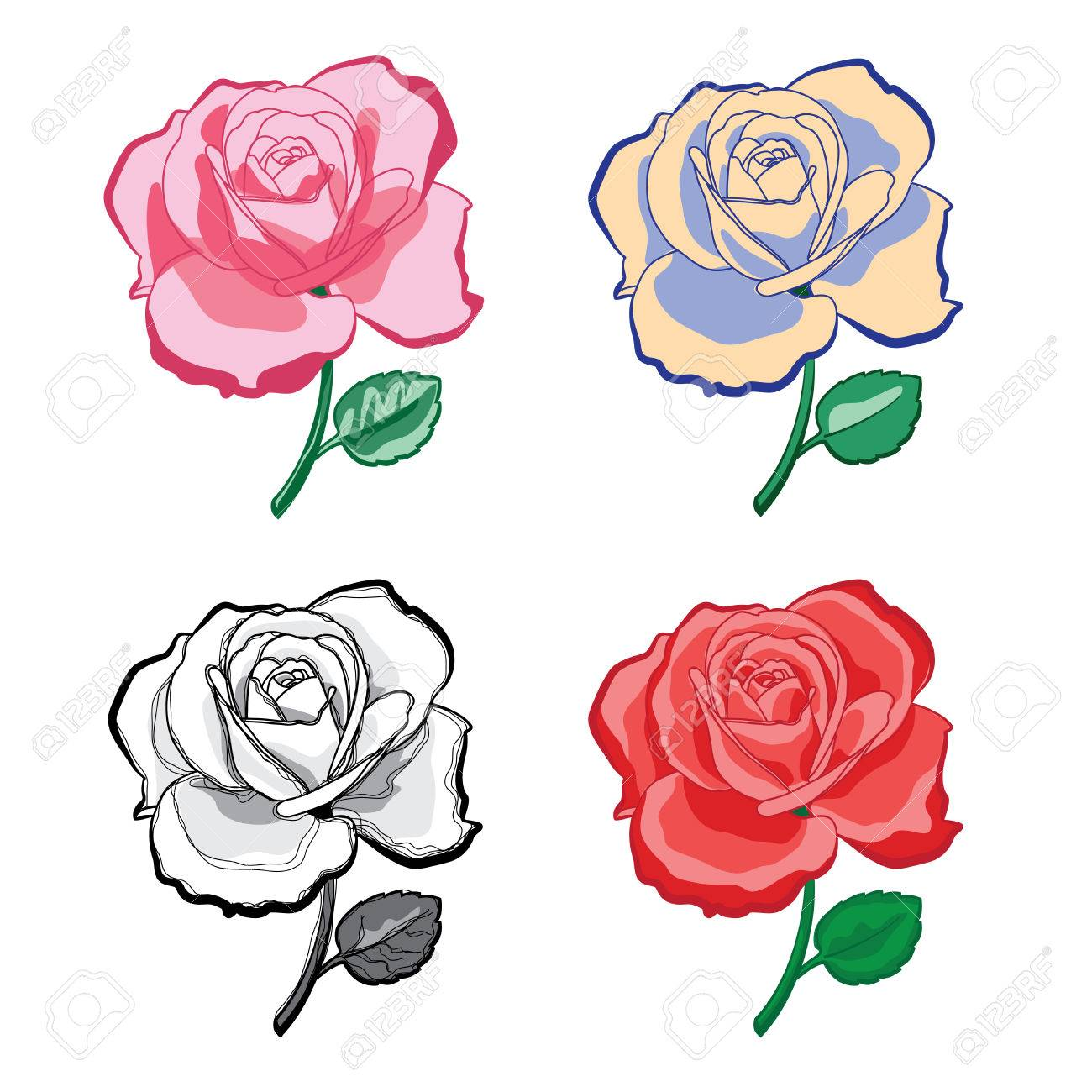 Illustration Set Of Color Artistic Drawing Roses For Print And