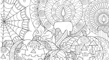 Spider Coloring Book